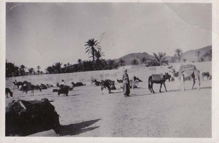 souks de Tagjicht 1934
